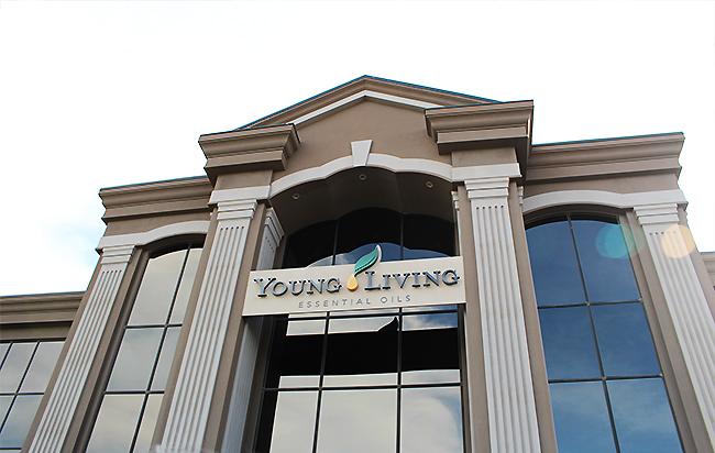 ヤングリヴイング・本社の写真